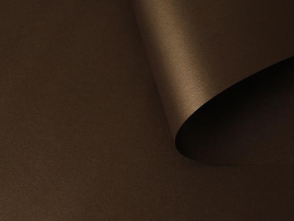 38 stardream bronze бронзовый