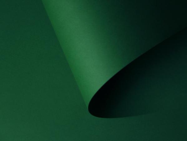 7 malmero amazone зеленый