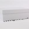 Розмір 30х20х10 см. Коробка зі з`ємною кришкою. Колір білий