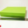 Коробка для подарочной упаковки. Цвет салатовый. Размер 20*20*4 см.